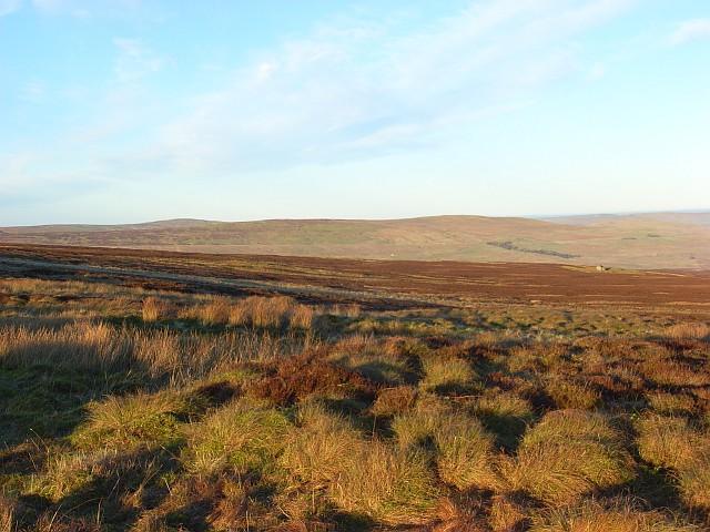 Moorland on Melmerby Fell