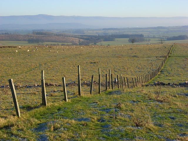 Pastures above Greystoke
