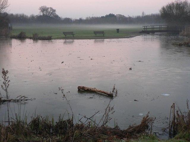 Littledown: the pond