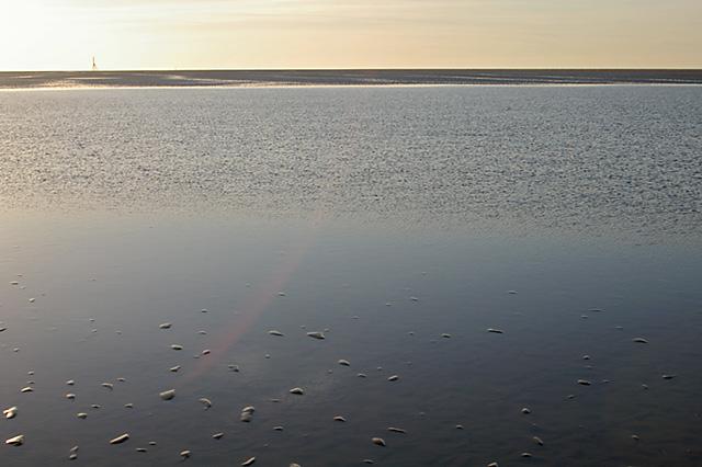 Temporary Lagoon