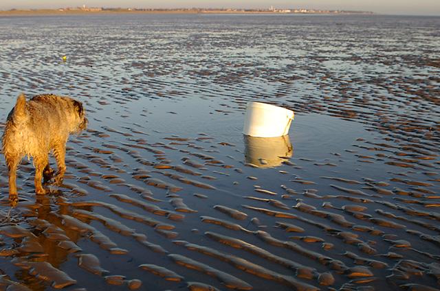 A bucket on the beach