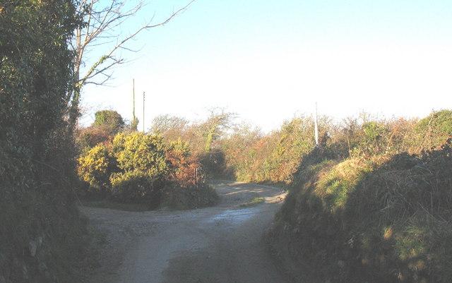 Narrow country lane leading towards Pen-y-gaer
