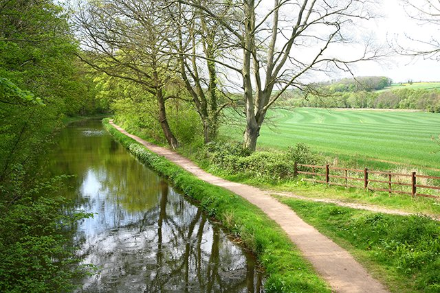 Chesterfield Canal at Pudding Dike Bridge