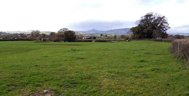 Pasture land near Wernrheolydd