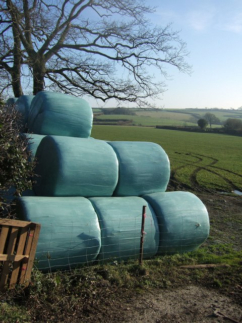 Silage bales at Plusha