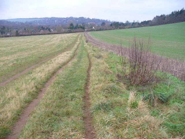 Footpath near Shalford