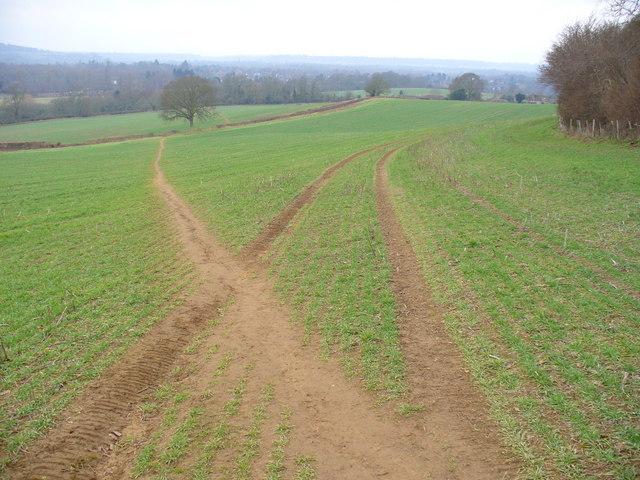 Field North of Chilworth