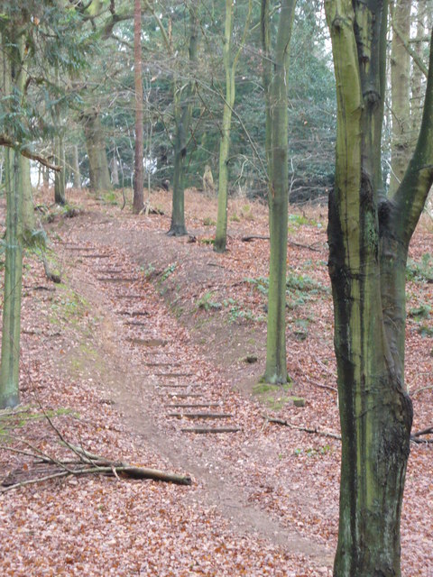 Path in the Chantries