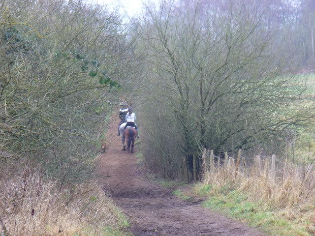 Bridleway to Tyting Farm