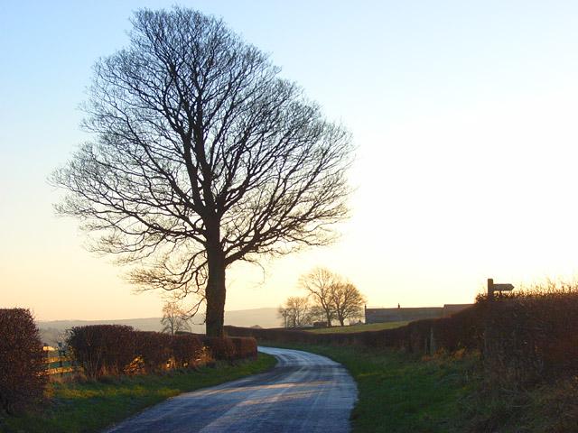Lane above Hesket Newmarket