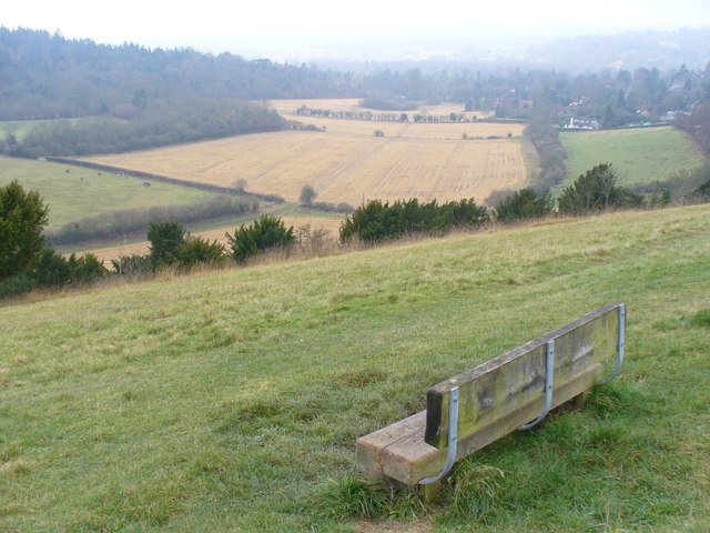 Pewley Down Viewpoint