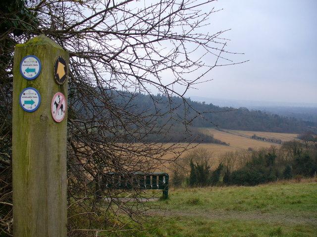 Scholar's Trail, Pewley Down