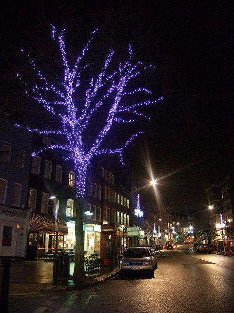 Hampstead Christmas tree