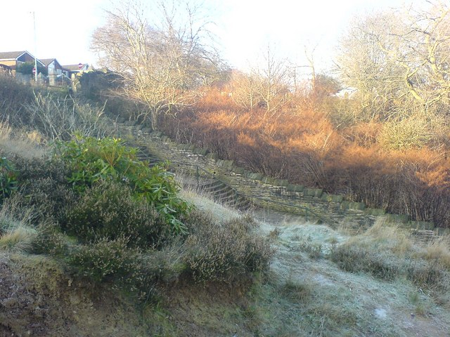 Frost on The Sandhills by Pantomime Steps
