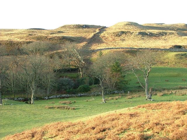 Trees and Croftland