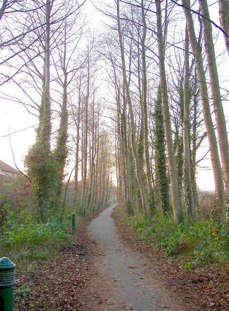 The railway path, Caton