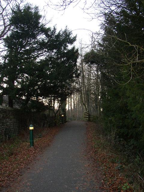 Lights on the railway path, Caton