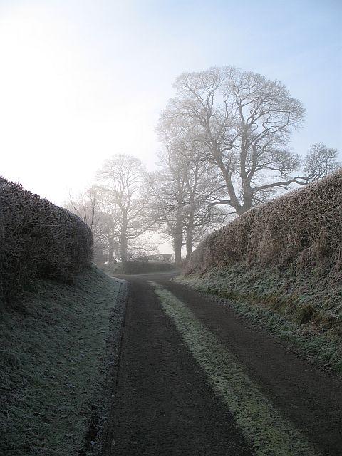 Edge of the fog, Jay