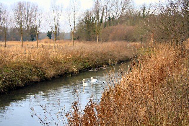 River Lark near Hengrave