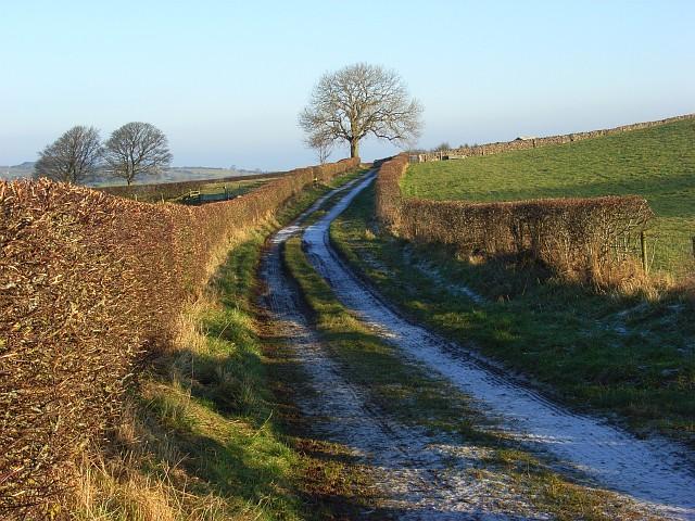 Track above Caldbeck
