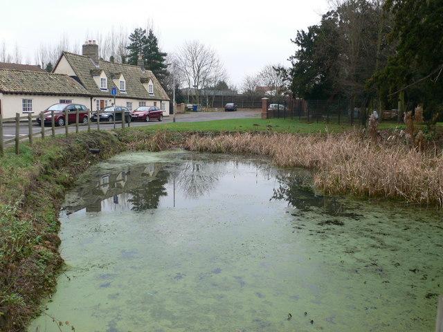 Pond, Fenstanton