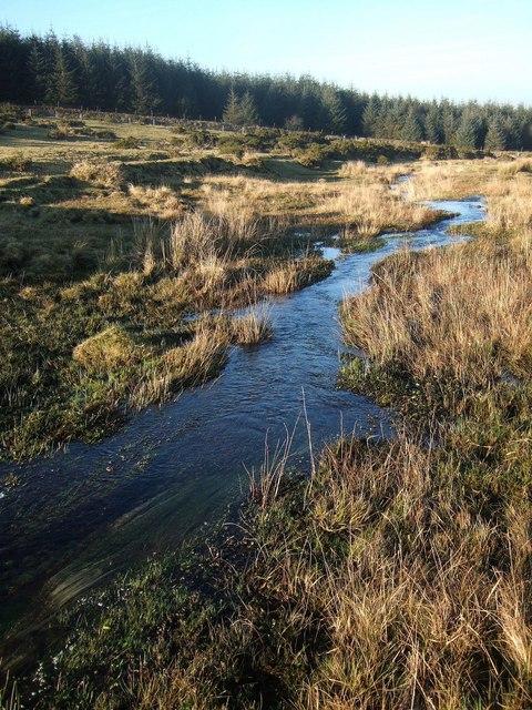 Stream on Bodmin Moor
