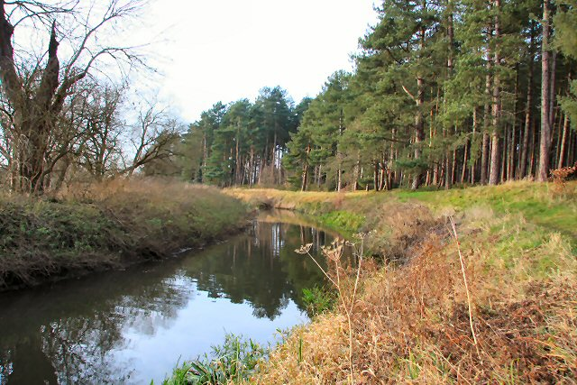 River Lark at West Stow Heath