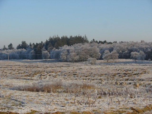 Frosty Weather (2)