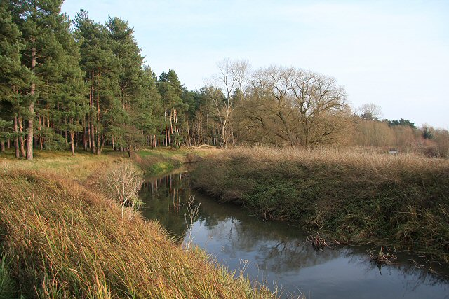 River Lark at West Stow Heath