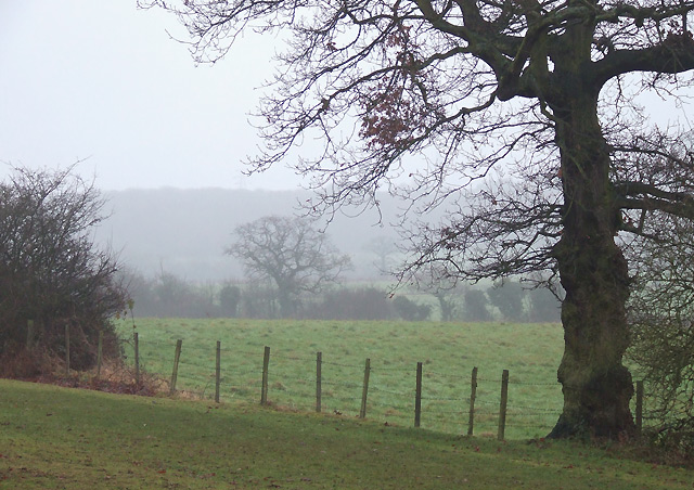 Grazing Land near Penn Common, Staffordshire