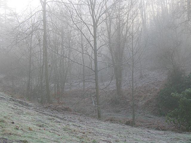 Woodland, Stanage Park