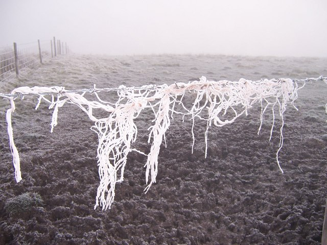 Hoar frost on baler twine caught on barbed wire