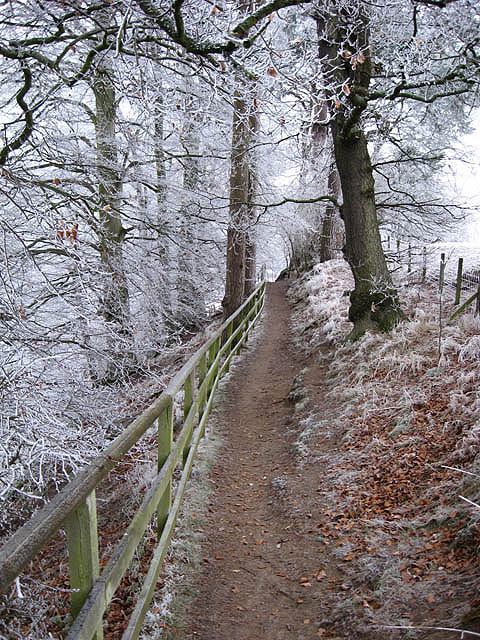 Long distance footpath near Darnick