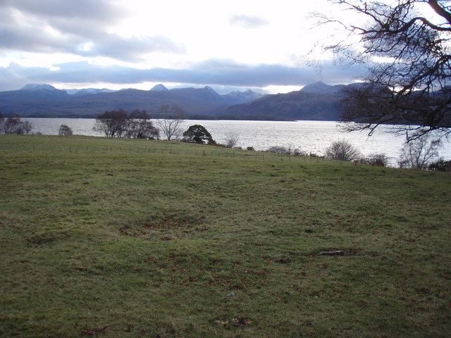 Fields at Arlair