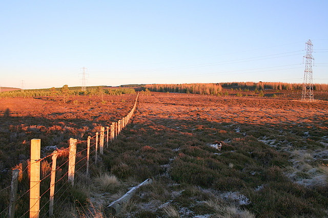 Fence line to the east of Hill of Glaschyle