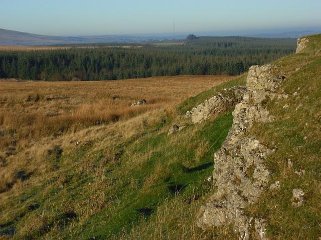 Limestone outcrops, Berrier Hill