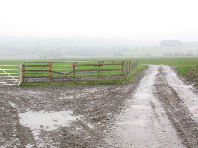 Farm access track, Binweston