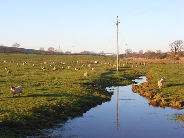 Lamb Beck and pasture, Blencow