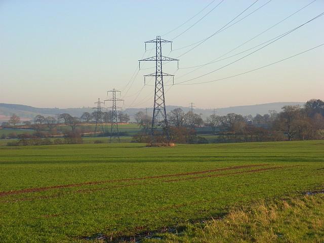 Farmland, Black Sykes