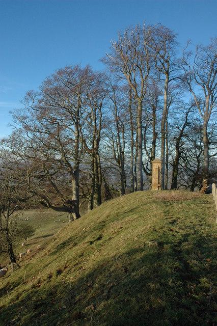 Cromwell's Clump, Beckbury Camp