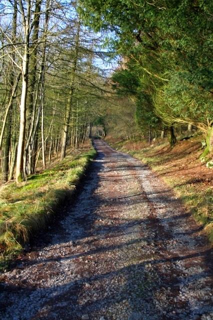 Track Around Malham Tarn