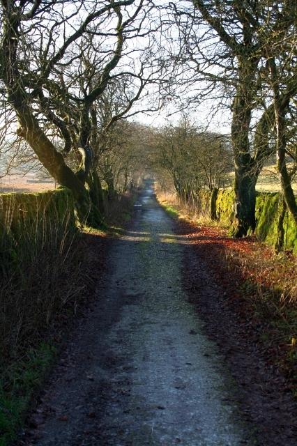 Malham Tarn House Drive