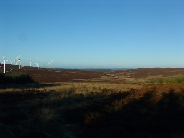 Long shadows on the moor
