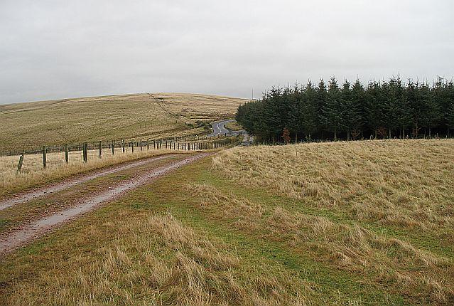 Country Road, Berwickshire
