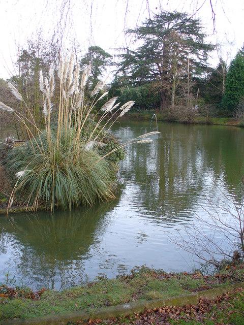 Worplesdon Place Lake