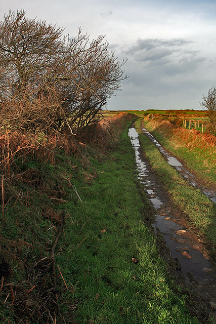 Lane near Ballagarrett
