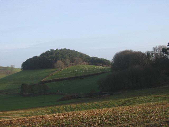 Boarsbarrow Hill