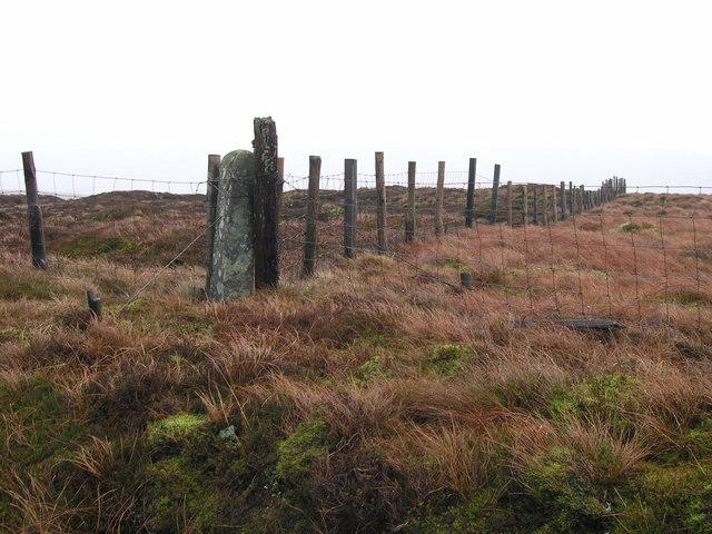 Boundary stone on Braidley Moor