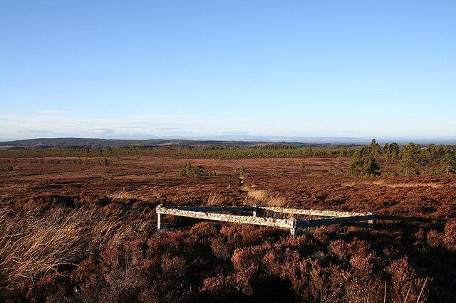 Well and Sluggan Burn on the Moss of Dunphail