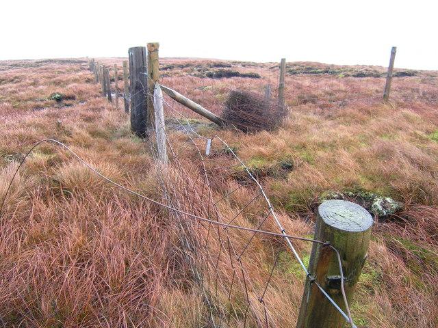 Junction of three fences near Fell Pot Hole